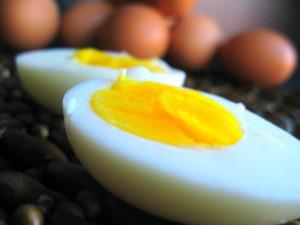 Benefits of the egg เมนูไข่...ให้ประโยชน์