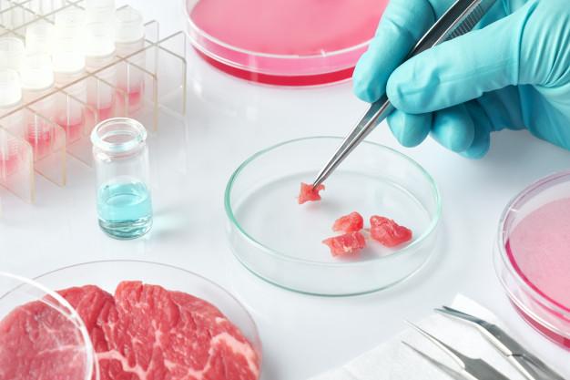 เนื้อสัตว์สังเคราะห์...อาหารแห่งอนาคต