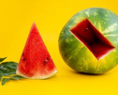 ส่วนของผลไม้อะไรบ้างที่ไม่ควรที่จะตัดทิ้ง